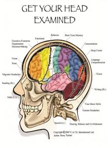 Head examination, concussion treatment