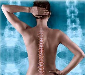 Chiropractor-Injury-Spine