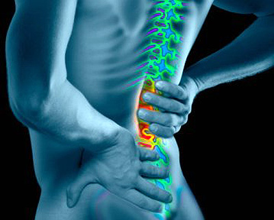 low back or hip pain