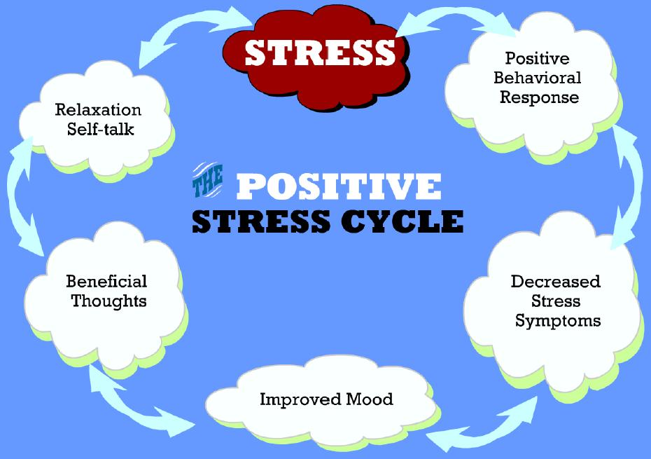 positive-stress-cycle