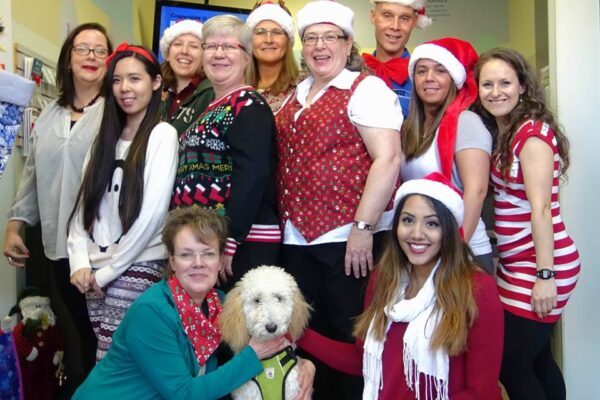 Pictured here is the Back to Health team during Christmas, 2015!
