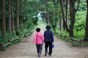 chiropractic for the elderly, elderly