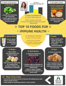 immune health top foods - infographic
