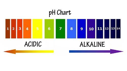 Alkaline and Acidic Foods