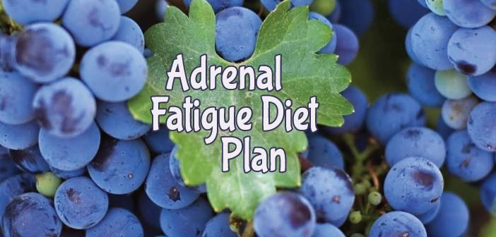 Adrenal-Fatigue-Diet-Thyroid-Nation