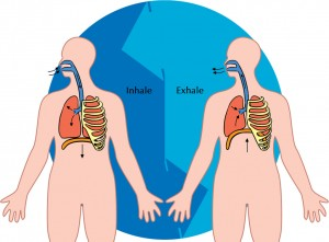 breathing picture lungs