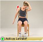 active levator
